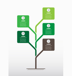 vertical timeline infographics tree of vector image
