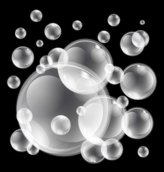 soap bubbles set on black background Sphere ball vector image