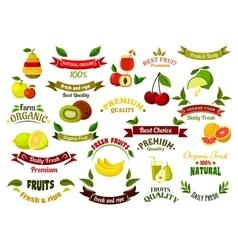 Ripe farm fruits design elements vector image vector image