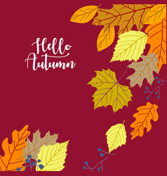 autumn background in flat style vector image