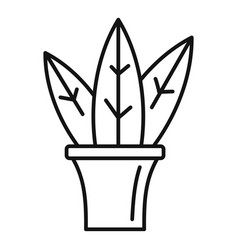 Big leaf houseplant icon outline style vector