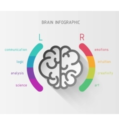 Brain nfographic concept vector