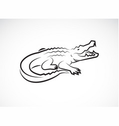 crocodile design on white background wild vector image