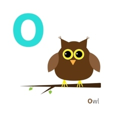 Letter O Owl Zoo alphabet English abc with vector image