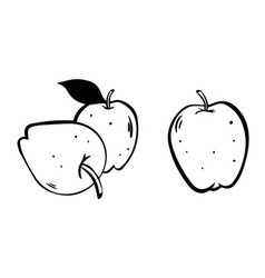 set sketch apples isolated on vector image