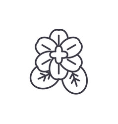 violet flower line icon concept violet flower vector image