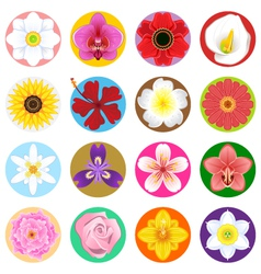 Flower Collection Set vector image
