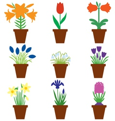 flower pot color vector image
