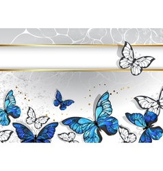 Narrow Banner with Butterflies Morpho vector image vector image