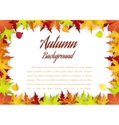 Autumn Frame With Falling Maple Leaves vector image