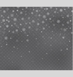 christmas snow on dark transparent background vector image