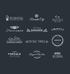 collection vintage elements vector image