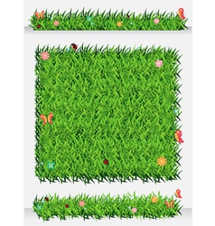 Green grass backgrounds vector