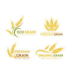 Premium grain flat logotype designs set vector