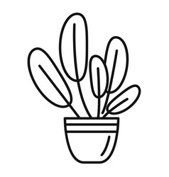 Round leaves houseplant icon outline style vector