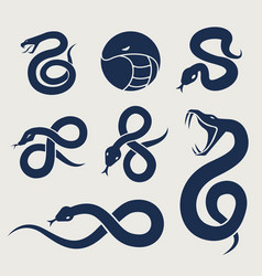 Snake logo icon symbol set vector