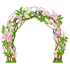 Wedding arch decorated with pink flower buds vector
