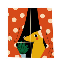 yellow dog is sitting on window cartoon vector image