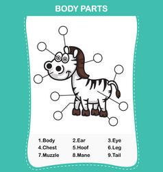 zebra vocabulary part of body vector image