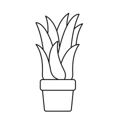 Black silhouette of corn plant in flower pot vector