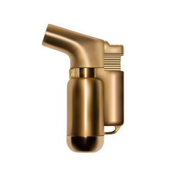 Gold lighter in the vector