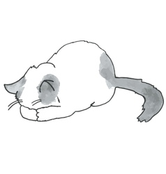 High quality of cute kitty vector