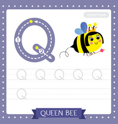 Letter q uppercase tracing practice worksheet of vector