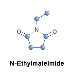 N ethylmaleimide is an organic compound vector