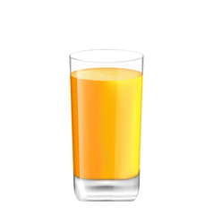 Orange Juice in Glass Isolated on White Background vector