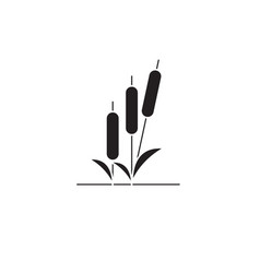 reed black concept icon reed flat vector image