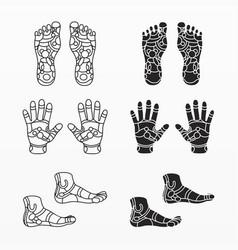 variety reflexology treatment set vector image