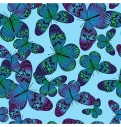 Seamless pattern with vintage green-blue butterfly vector image vector image