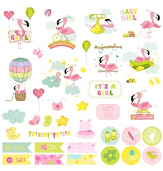 Baby Girl Flamingo Scrapbook Set vector image