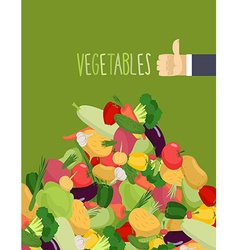 Bunch of fresh vegetables turnips and squash hand vector