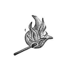 burning match dotwork vector image