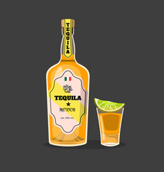 Cartoon tequila bottle mexican alcohol isolated vector