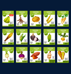 Exotic vegetables farm market price cards vector