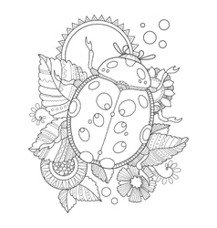 Ladybug coloring book vector image