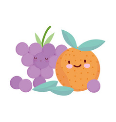 orange and grapes fruits menu character cartoon vector image