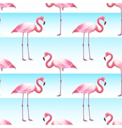 Pink Flamingo Seamless Horizontal Stripes Pattern vector
