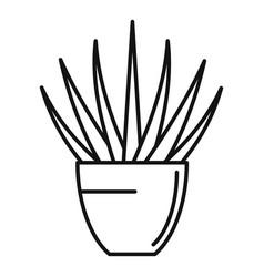Succulent flower pot icon outline style vector