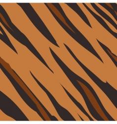 tiger skin print pattern vector image vector image