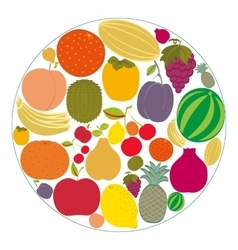 Flat fruit icons gathered in a circle vector image