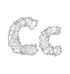 flower alphabet the letter c vector image vector image