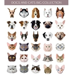 Set of flat popular Breeds of Cats and Dogs icons vector image