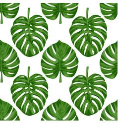 monstera seamless pattern vector image vector image