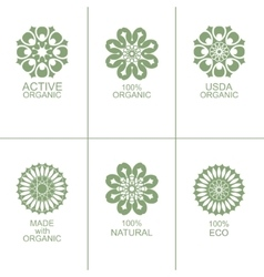 Set of natural organic eco badges and labels vector image