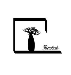 boab or baobab tree isolated logo icon vector image