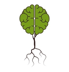 brain plant green vector image