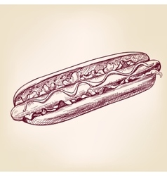 Hot dog fast foodhand drawn vector